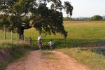 passeios-de-bicicleta3