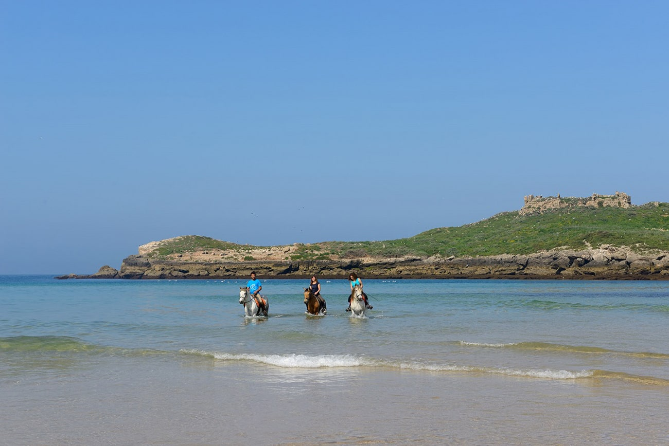 experiencia-passeios-a-cavalo-pela-praia